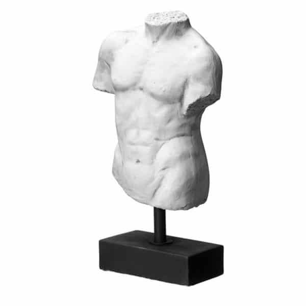 torso Wikholm form